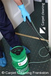 Professional Carpet Cleaners Frankston 3199