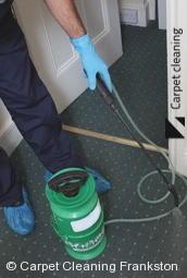 Frankston Steam Carpet Cleaners 3199